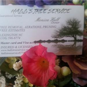 Halls Tree Service Logo