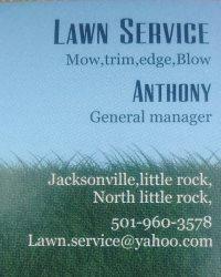 M.S.I Lawn Service Logo