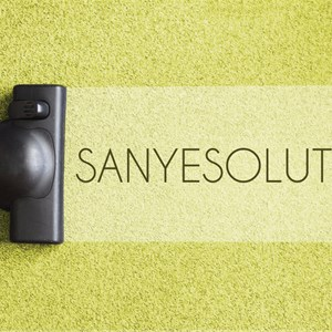 Sanyesolutions Logo