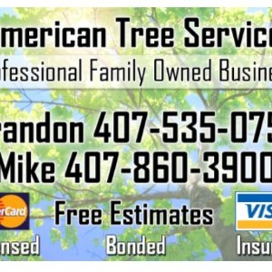 All american tree services Logo