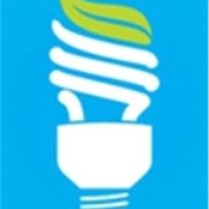 Desmet Electrical Services Logo
