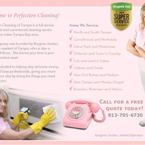 Perfection Cleaning Services of Tampa Logo