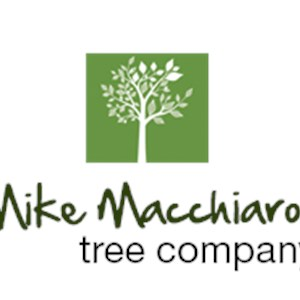 Mike Macchiaroli Tree Company Inc Cover Photo