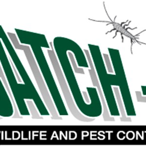 Catch-it Wildlife & Pest Control Inc Cover Photo