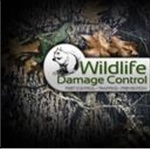 Animal Control and Wildlife Removal Services Cover Photo