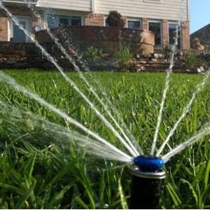 Texas Rain Irrigation Cover Photo