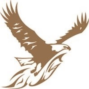 Eagle Eye Landscaping LLC Logo