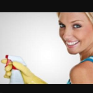Honestly Organic Housekeeping Logo