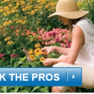 Clean AIR Gardening Cover Photo