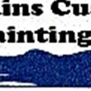 Jenkins Custom Painting Cover Photo