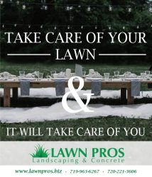 Lawn Pros Landscaping Artificial Turf & Synthetic Grass. Logo