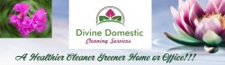 Divine Domestic Cleaning Serivces Logo