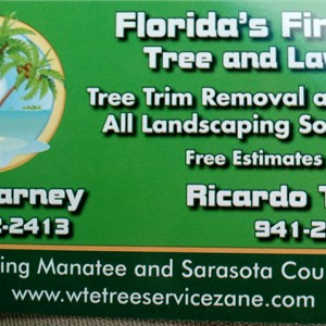 Wte Tree Services Cover Photo