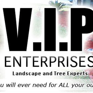 V.i.p Enterprises Logo