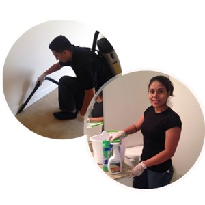 Dalias Cleaning Services Logo