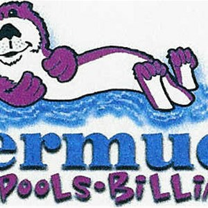 Bermuda Spas Pools & Billiards Logo