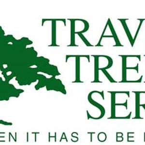 Quality Tree Care Logo