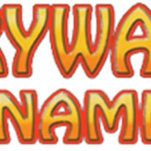 Drywall Dynamics Inc Logo