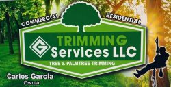 Diamond G Services LLC Logo