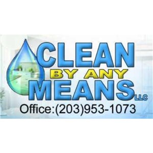 Clean By Any Means Llc. Logo