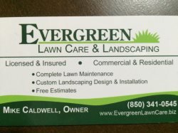 Evergreen Lawn Care & Landscaping Logo