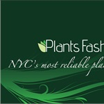 Plantsfashion Inc Cover Photo