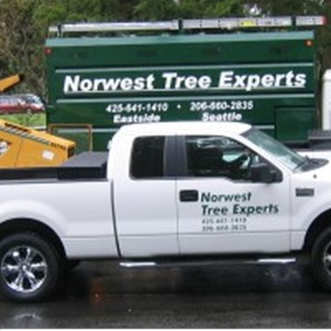 Norwest Tree Experts Logo