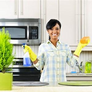 Ing Pro Cleaning Logo