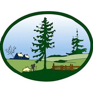 American Landscape and Lawn Logo