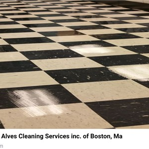 Alves Cleaning Services Logo