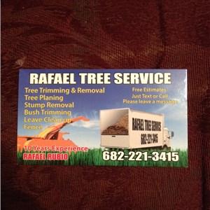 Rafaels Tree Service Logo