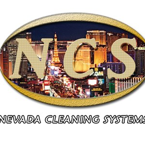 Nevada Cleaning System Cover Photo