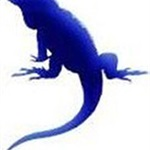 Blue Iguane Design Cover Photo