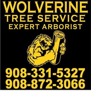 Wolverine Tree Service Logo