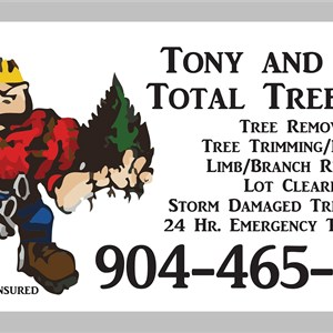 Tony and Sons Total Tree Care Cover Photo