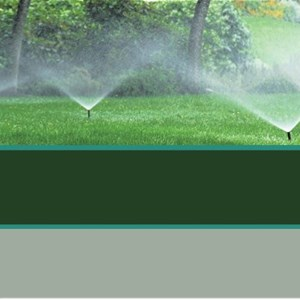 All American Landscape Maintenance Cover Photo