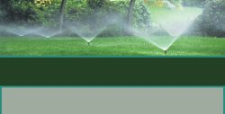 All American Landscape Maintenance Logo