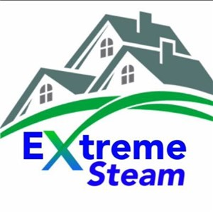 Extreme Steam Logo