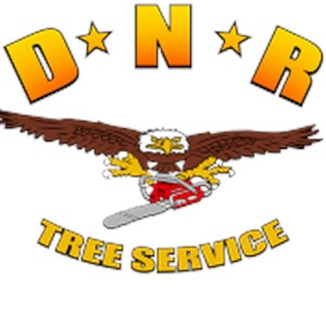 Dnr Tree Service Cover Photo
