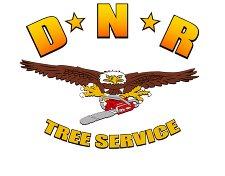 Dnr Tree Service Logo