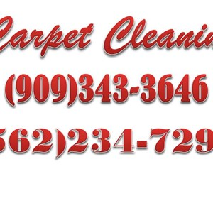 Express Carpet Cleaning Logo