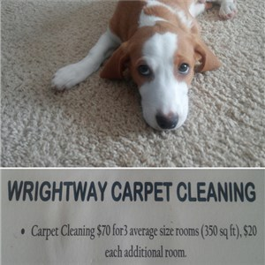 Wright Way Carpet Cleaning Logo