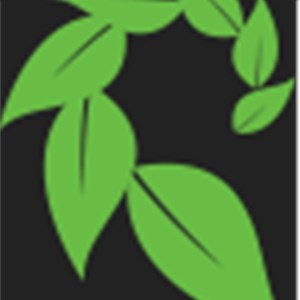 The 1 Tree Service Logo