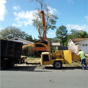 Obriens Tree Service Cover Photo