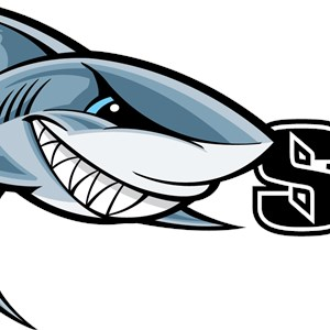 Pool Shark Service Logo