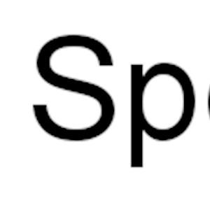Rain City Specialists Inc Logo