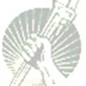 Woods Home Repairs Logo