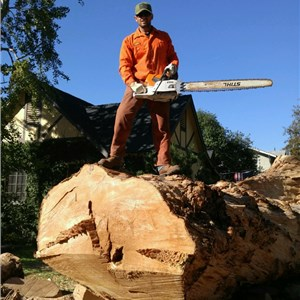 Temecula Valley Tree Care Logo