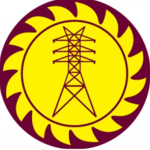 Mag Electric Logo