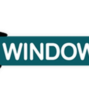 Window Gang Logo